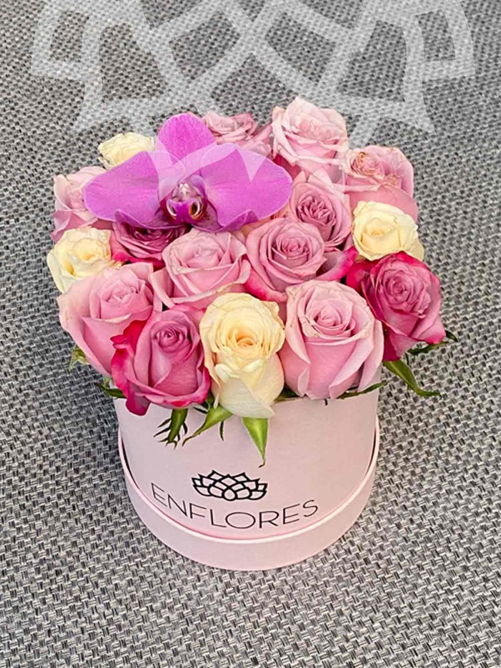 Durán, 18 rosas
